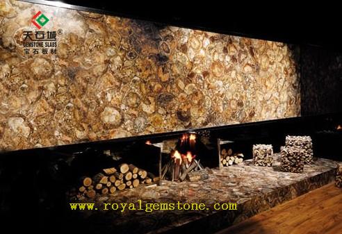 TSC-E2亿万年木化石墙体